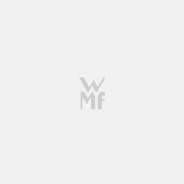 Vas pentru gătit la aburi WMF Vitalis Compact Aroma cu garnitură din